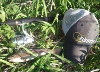 trout fishidy hat