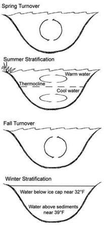fall turnover