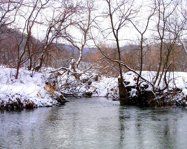 winter trout hole