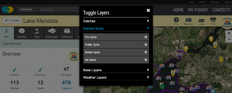 map layer toggles