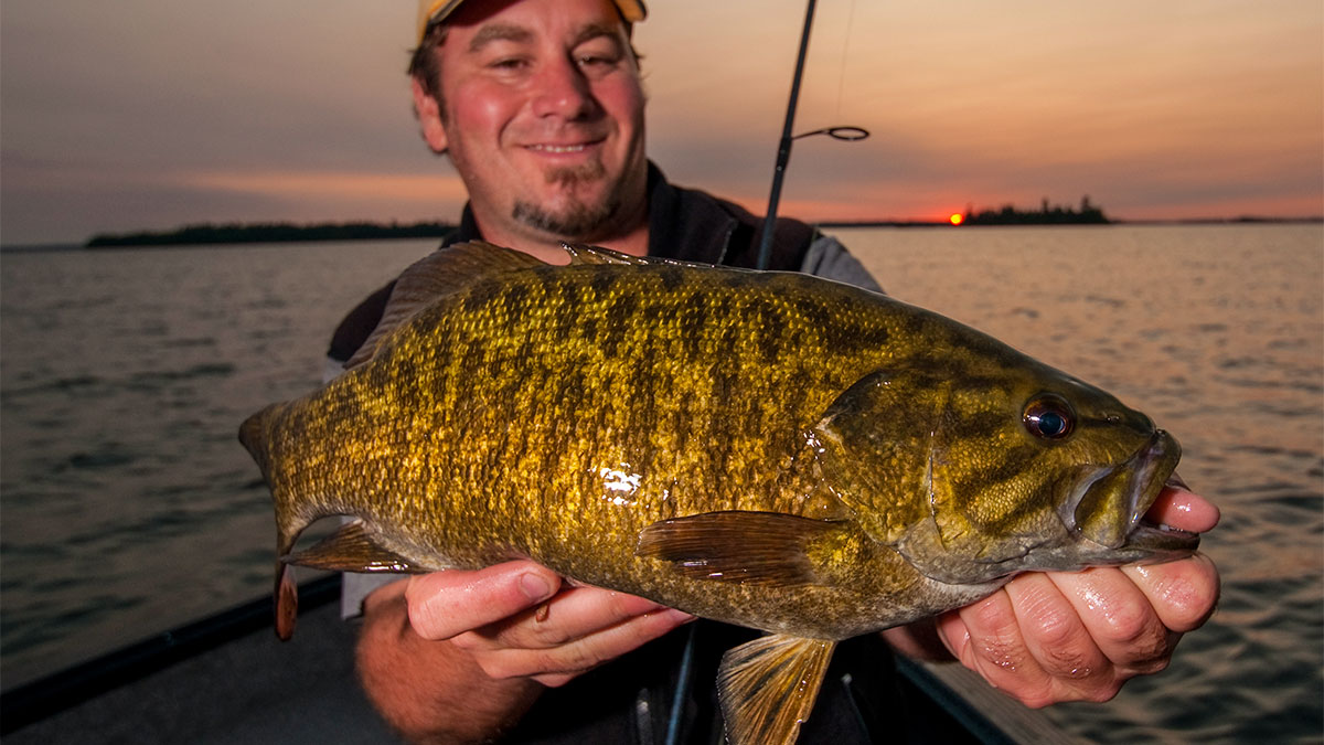 2015 top 15 smallmouth bass lakes ranked by wired2fish for Best bass fishing lakes
