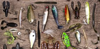 organize your tackle