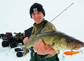 ice fishing walleye with lure