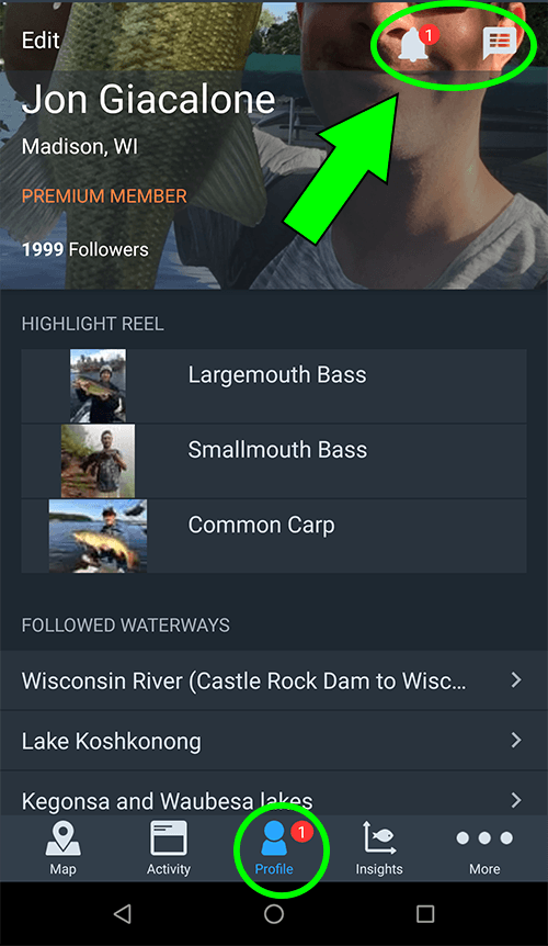 profile and notifications