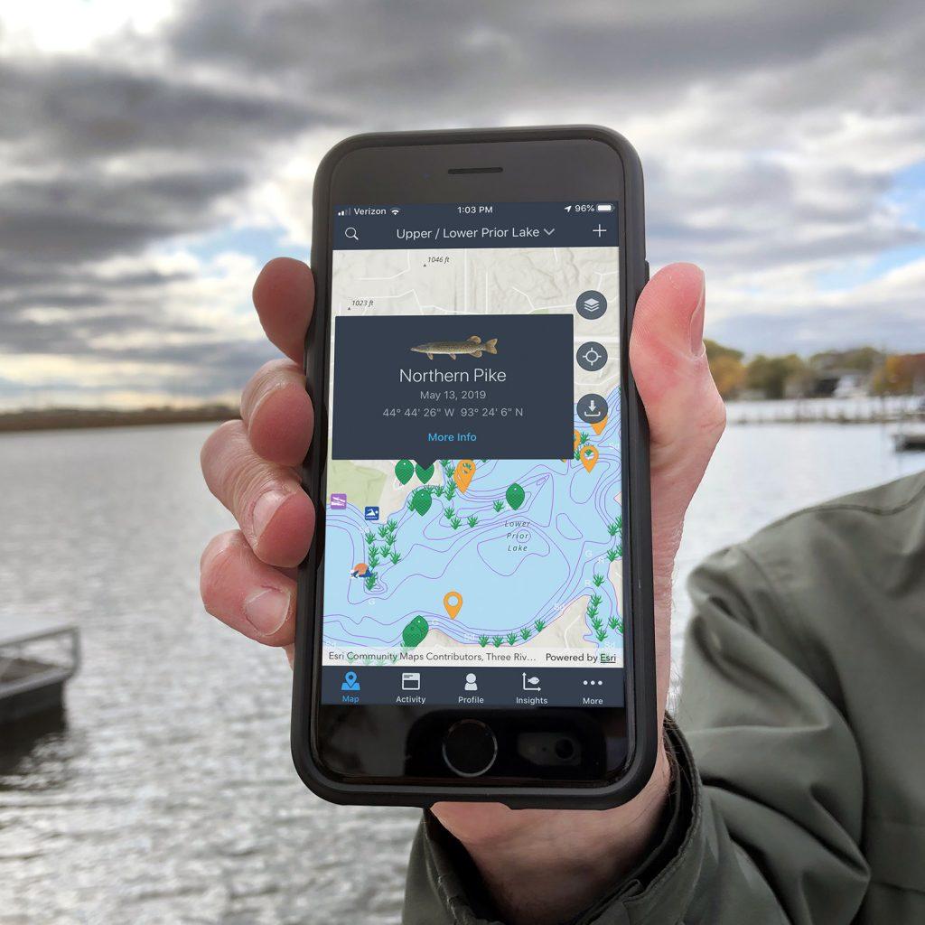 carte app fishidy